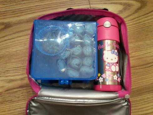 Bright Bin packed in insulated lunch box with Thermos FUNtainer of water